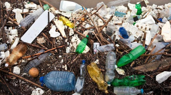 Plastic trash of the kind carried in stormwater